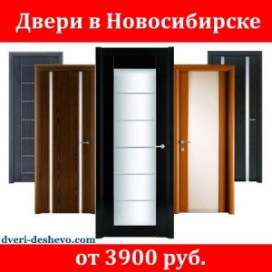 Купить двери в дом Новосибирск.