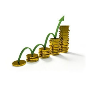 Решение финансовых проблем в максимально быстрые сроки.